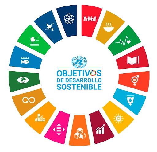 Alineación del Plan Nacional de Desarrollo 2019-2024 con los objetivos globales de movilidad sustentable